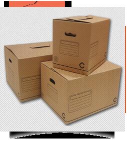 Caja De Cartón Plus
